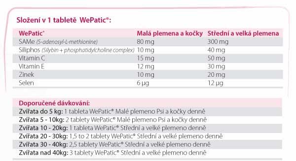 wePatic